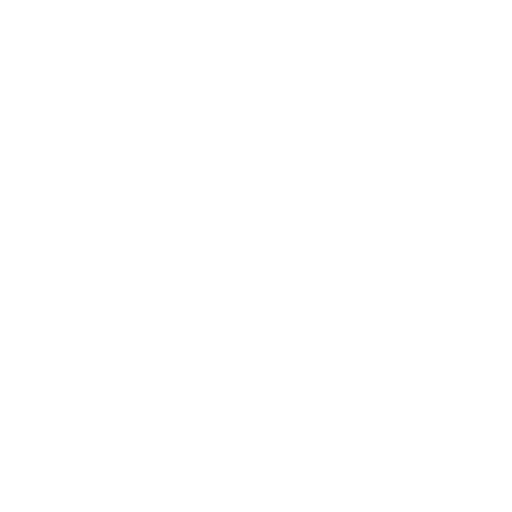 party bag icon